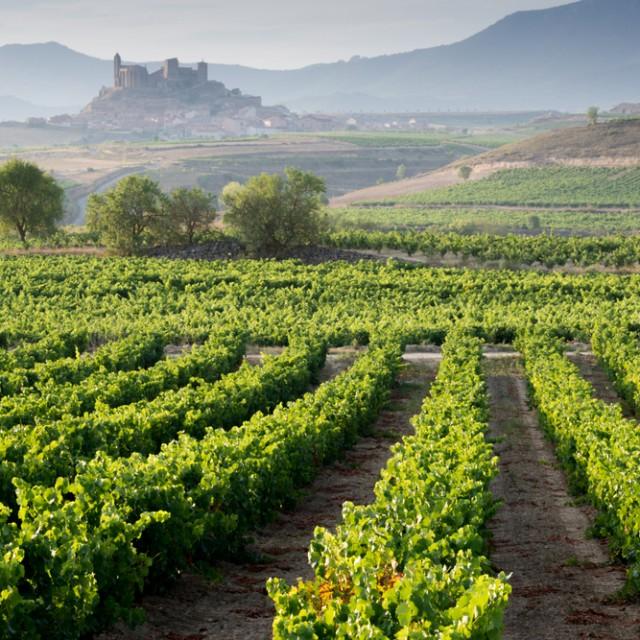 Rioja & Navarra